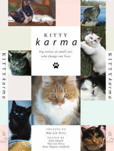 KITTY KARMA