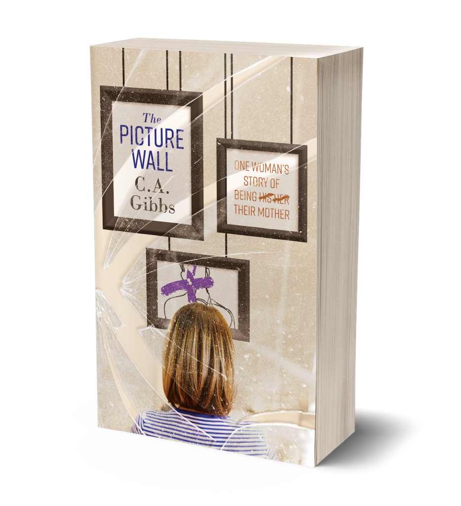3D Picture Wall Book Cover