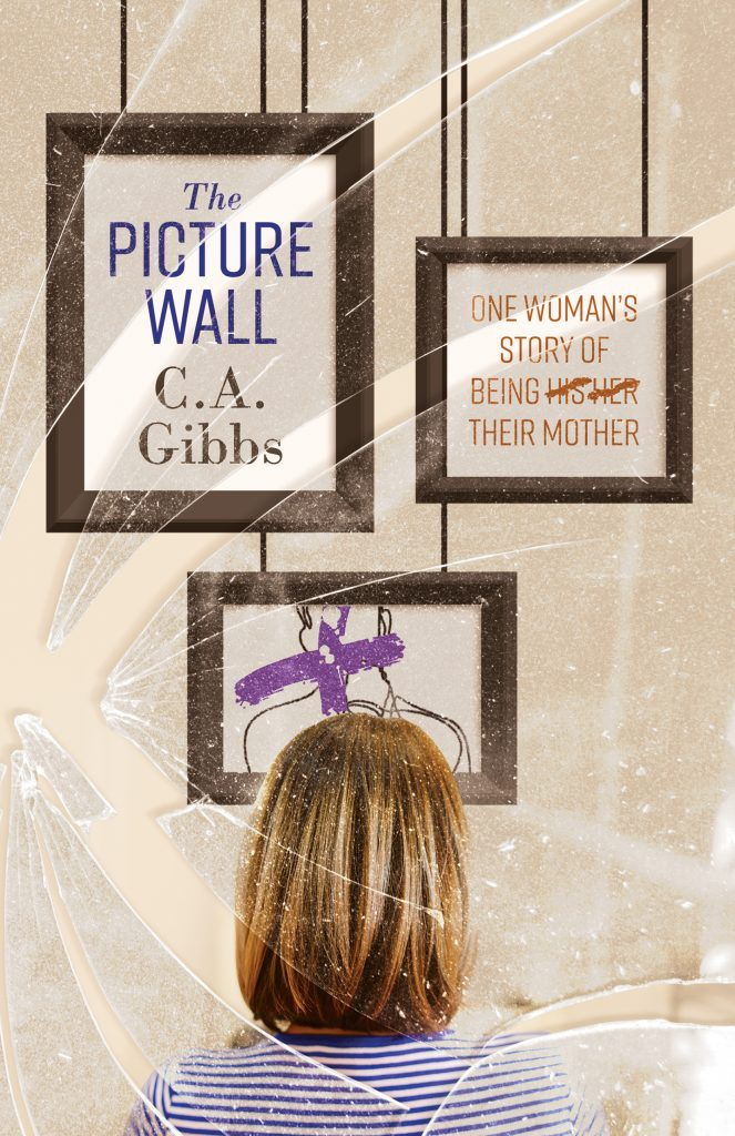 The Picture Wall book cover